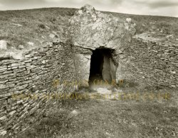 Click to a larger version of Stoney Littleton Long Barrow, Bath & NE Somerset (English Heritage): photo © Mick Sharp