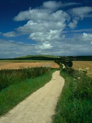 Click to a larger version of The Ridgeway and Uffington Castle, Oxfordshire (National Trust): photo © Mick Sharp
