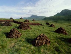 Click to a larger version of Quiraing Peat Stacks, Trotternish, Isle of Skye, photo © Jean Williamson