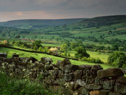Click to a larger version of Farndale, North Yorkshire: photo © Jean Williamson